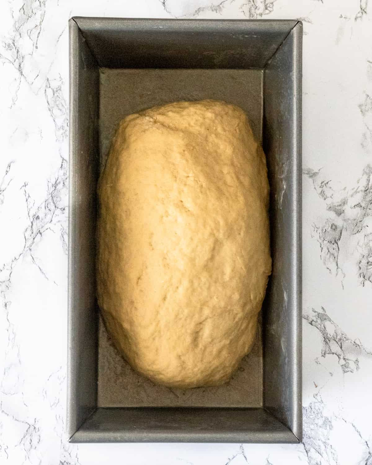 A loaf of honey wheat bread dough in a pan.