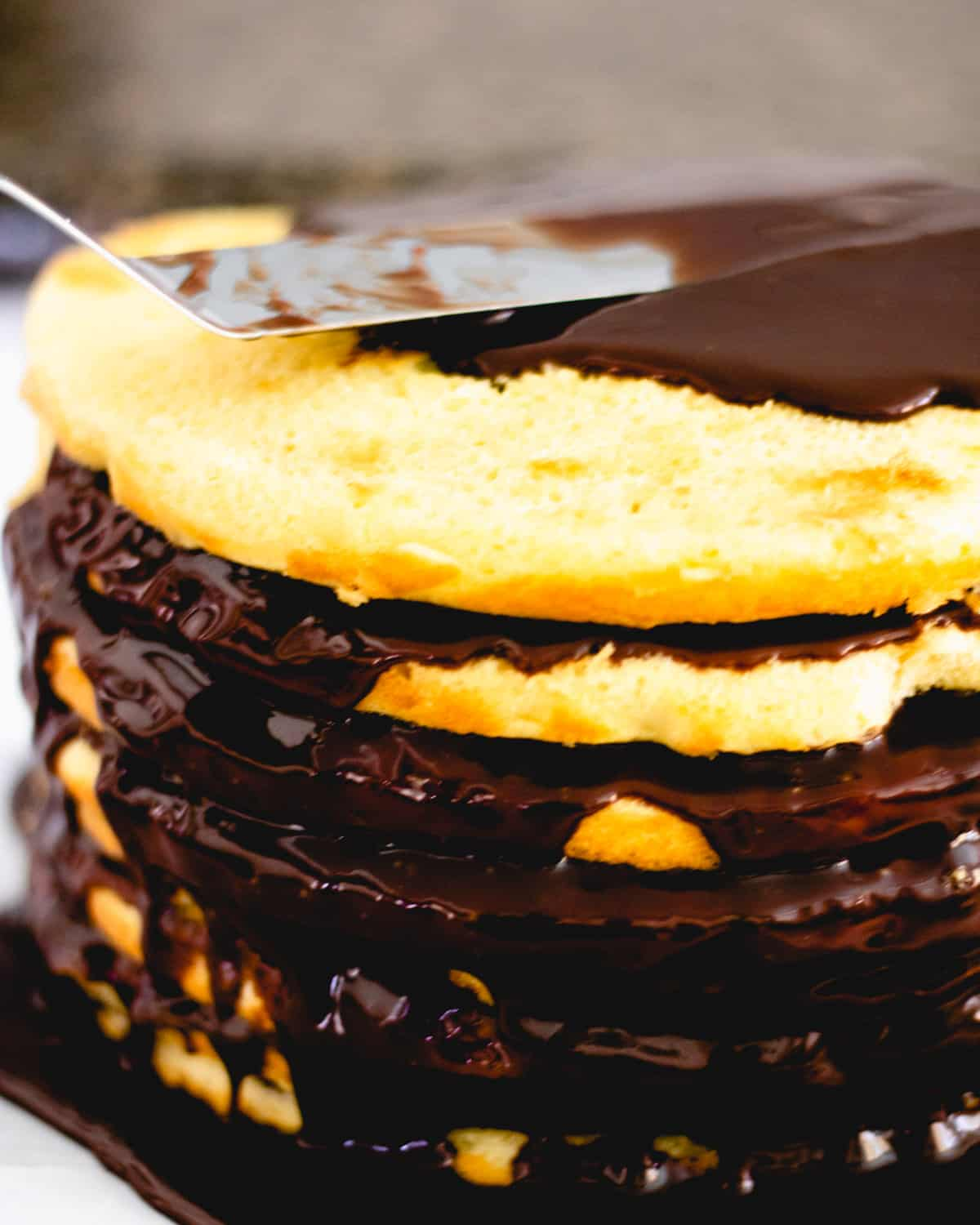8 layers of thin yellow cake with fudge in between each layer. Spreading on the top layer.